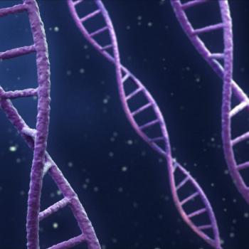 DNA double helixes