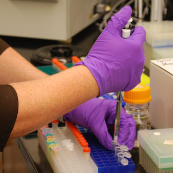 Paving the Way to More Reliable Scientific Research