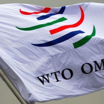 WTO Flag
